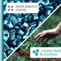 Einführungsworkshop zum Programm Swiss Triple Impact (STI)