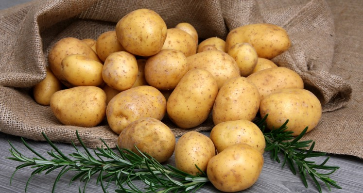 "Kartoffeln ""Surprise"""