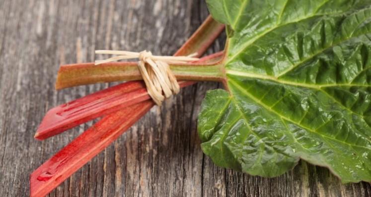 Tartines épicées à la rhubarbe
